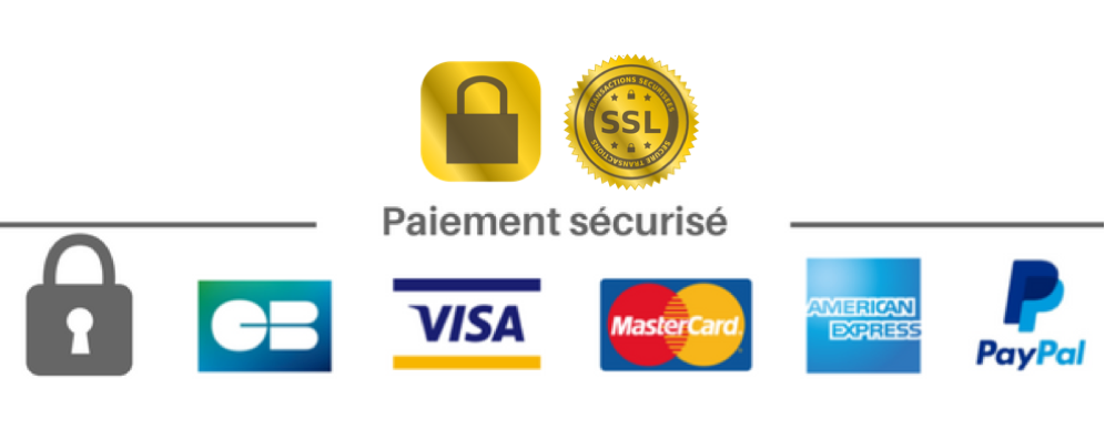 checkout-paiement-securise-ssl.png